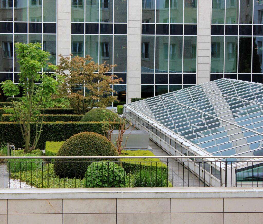 Rooftop garden in city